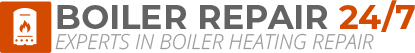 Willesden Boiler Repair Logo